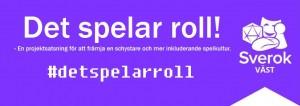 DSR_banner